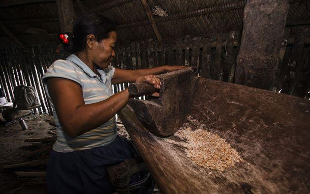 Los granos de maíz son molidos en una batea de madera y luego cocinados en un tiesto de barro.