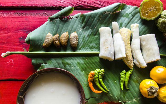 La selva ofrece una gran variedad de ingredientes a la rica y exótica gastronomía de Sucumbíos.