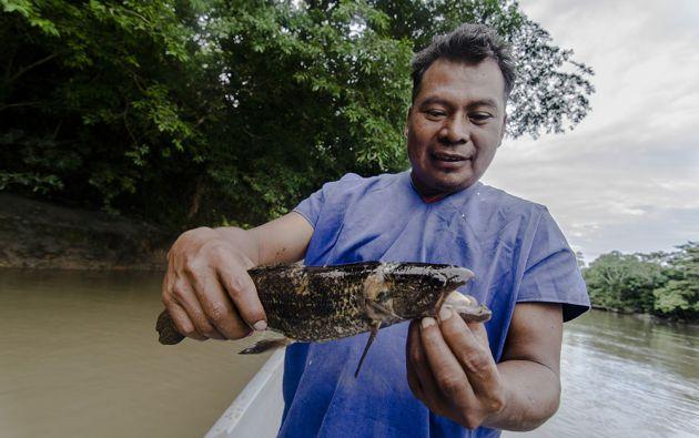Un pescador muestra un guachinche.