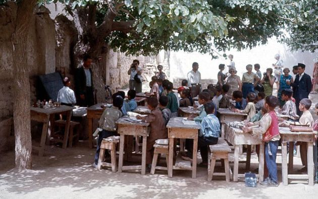 Educación bajo los árboles