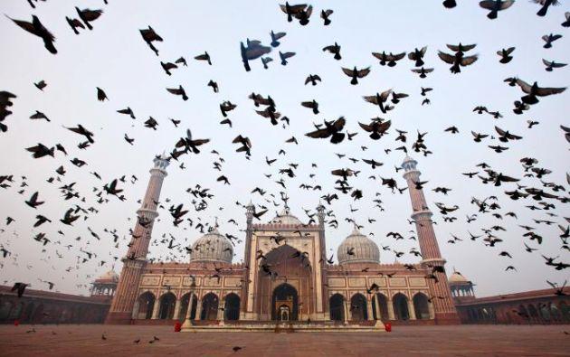 MEZQUITA JAMA MASJID - De la India Jama Masjid, cuenta con una piedra arenisca roja y mármol exterior que rinden homenaje al imperio Mughal, gran parte de la cual fue influenciada por Persia.