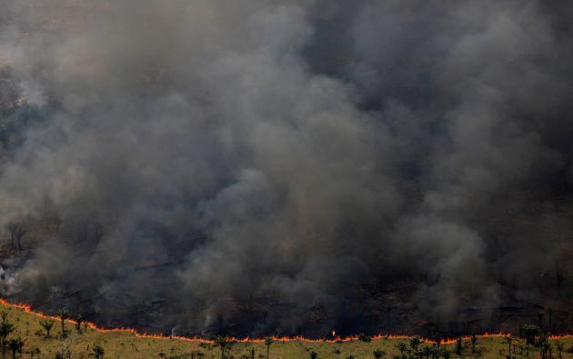 """Durante la """"Operación ola verde"""" realizada por agentes del Instituto Brasileño del Medio Ambiente y Recursos Naturales Renovables (Ibama) para combatir la tala ilegal en Apui, Brasil, el 4 de agosto"""
