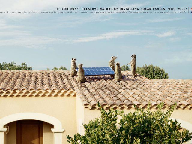 Si tú no conservas la naturaleza mediante la instalación de paneles solares, ¿quién lo hará?. Publicidad de EDF (French Electricity).