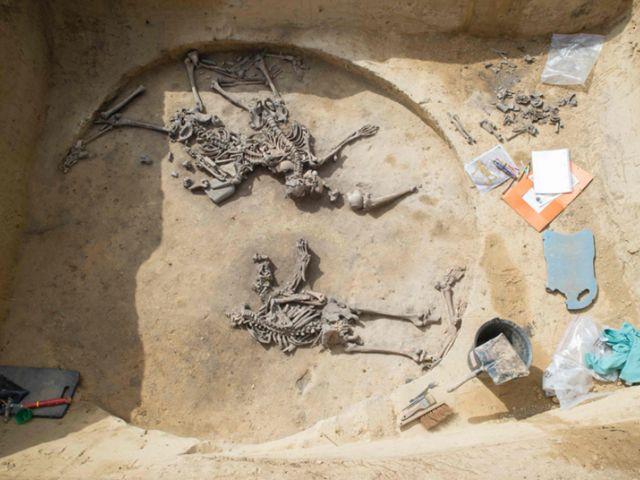 """París. Un equipo de arqueólogos descubrió un vestigio de una vieja masacre de más de 6 mil años en el este de Francia, prueba de una """"furia guerrera ritualizada"""", según los arqueólogos."""