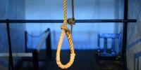 Veterinarios, un gremio con mayor riesgo de suicidio en EEUU. Foto: Pixabay