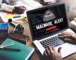 La fauna de los malware la componen, entre otros, virus, troyanos, gusanos, phishing y más.| Foto: Internet.