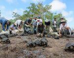 Foto: Facebook Parque Nacional Galápagos.