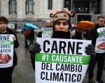 Manifestantes protestaron contra el cambio climático. Foto: AFP