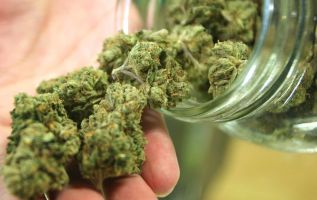 La iniciativa permite importar el aceite de cannabis para los pacientes con indicación médica, pero no contempla el autocultivo. Foto referencial: Veoverde.