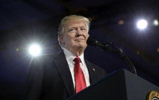 Revista porno ofrece $10 millones por información contra Trump. Foto: Archivo