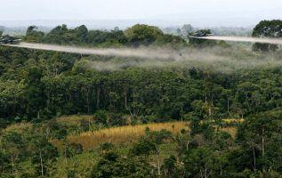 Ecuador apoya a poblaciones de frontera con Colombia afectadas por glifosato. Foto: Archivo - Referencial