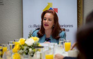 """""""Tendré una conversación con el presidente luego de la elección para saber qué decisión es más conveniente para el país"""", dijo Espinosa. Foto: Cancillería"""