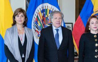 """Holguín insistió en que su país comprende """"las razones"""" de Ecuador para desvincularse de las conversaciones de paz con el ELN. Foto: OEA"""
