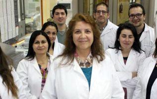 El equipo de investigadores de la chilena Universidad de Concepción, autor de la investigación.