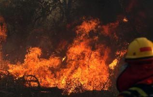 El fuego es resultado de la quema de campos de cultivo, práctica que busca mejorar la calidad de la tierra para la siembra. Foto: AFP