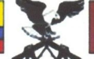 Logo: un águila de alas negras, cabeza y cola blancas, con las patas agarrando dos fusiles.