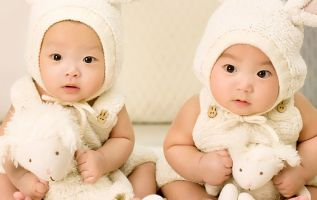 Nacieron gemelas, apodadas Lulu y Nana, no se sabe nada más. Foto referencial: Pixabay