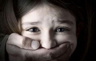 La normativa pretendía registrar a las personas mayores de edad, nacionales y extranjeras, que cometieron delitos en contra de la integridad sexual y reproductiva de niñas, niños y adolescentes.