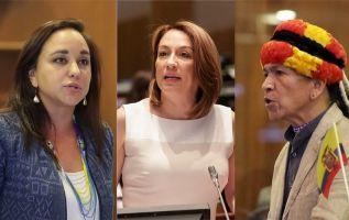 Rivadeneira, Buendía y Viteri mantienen su condición de asambleístas..