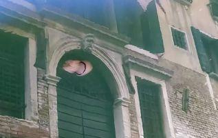 Medusas se observan en las aguas cristalinas de Venecia. Foto: AFP.