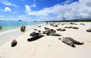 Los galapagueños podrán ingresar de manera gratuita a seis playas ubicadas en áreas protegidas.