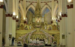 La imagen de la virgen de El Cisne es de 66 centímetros de altura, vestida elegantemente con un traje blanco y capa color durazno. La tradicional procesión, romería y eucaristía han sido cerradas al público y solo se les da seguimiento por medios de comunicación o redes sociales.