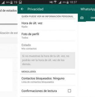 Si aún no estás familiarizado con los estados de Whatsapp, aquí te dejamos una breve guía.