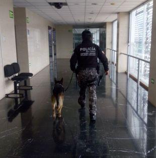 Alex Veloz, del área de Explosivos del GIR, aseguró que se realizaron todos los protocolos de seguridad y se determinó que se trató de una falsa alarma.