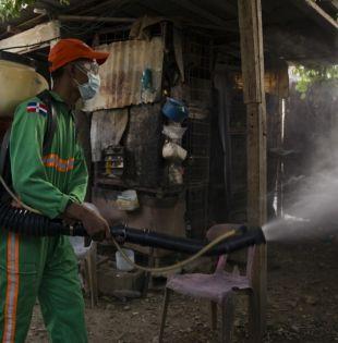 Las medidas utilizadas habitualmente para controlar su proliferación y las epidemias que transmite están llegando a sus límites. Foto: AFP.