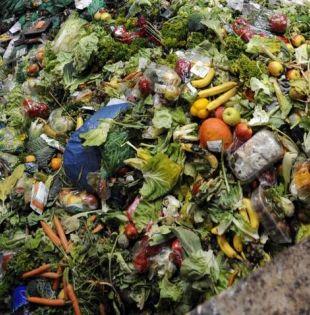 Con solo un 9% de la población global, la región es responsable de un quinto de las pérdidas de alimentos. Foto: FAO.