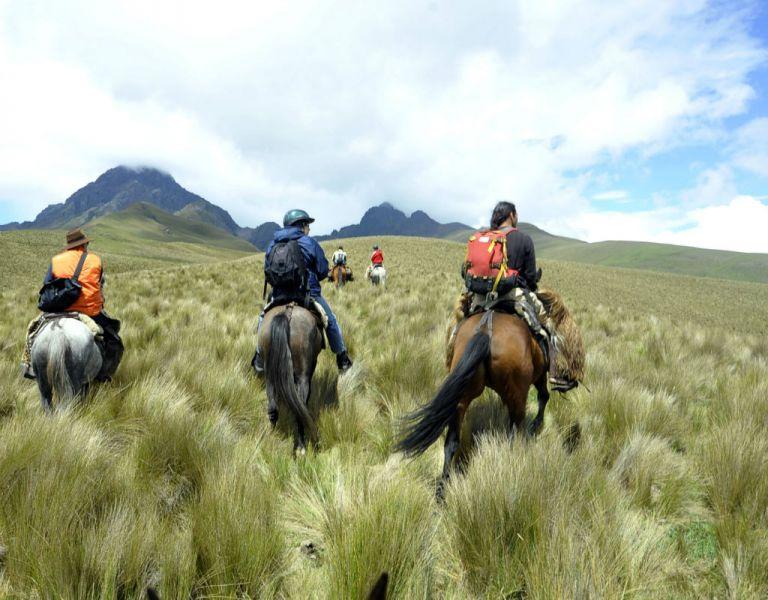El programa incluye al páramo El Ángel-Chiles-Quitasol (corredor transfronterizo entre Colombia y Ecuador) y al complejo Chimborazo.