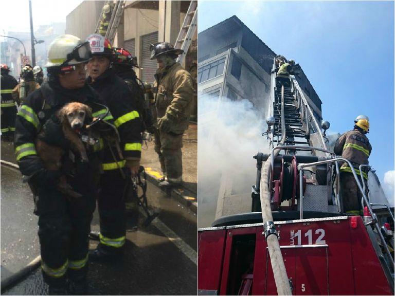 El Cuerpo de Bomberos de la ciudad rescató a dos personas y un perro en el inmueble del siniestro. Fotos: Carlos Pincay y Bomberos de Guayaquil