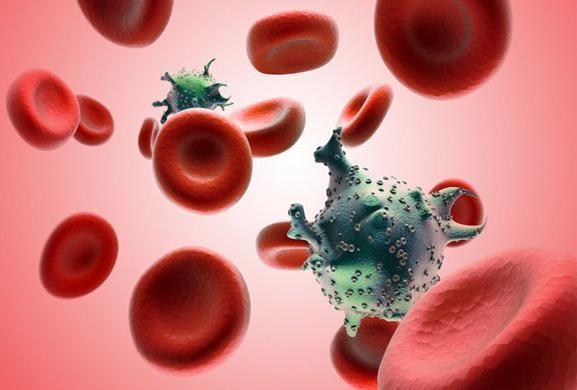 """El nuevo anticuerpo activa células en las que el VIH ha permanecido latente y, al mismo tiempo, dirige las llamadas """"células T"""" para que les destruya."""