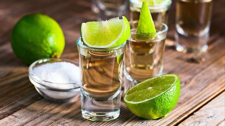 Lo más importante para producir el tequila es el agave y los suelos fértiles.