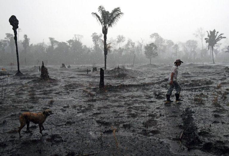 Un agricultor brasileño y un perro caminan a través de una zona quemada de la selva amazónica, cerca de Porto Velho. Foto: AFP