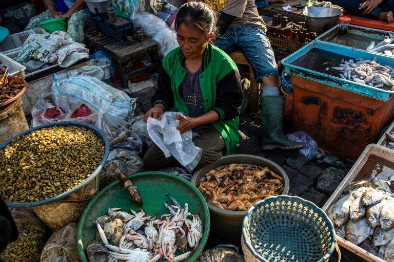 """Con la dieta """"dos tercios veganos"""" se tendría una menor huella de carbono que en una dieta vegetariana tradicional. Foto: AFP."""