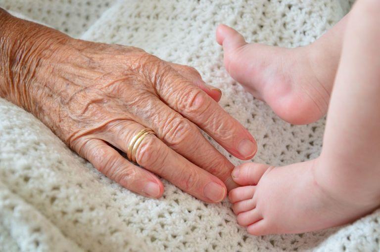 Si se confirma que el embarazo de Tian fue natural, se trataría de un récord mundial. Foto: Pixabay