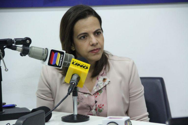 La ministra de Gobierno cuestionó algunas de las recomendaciones de la CIDH.