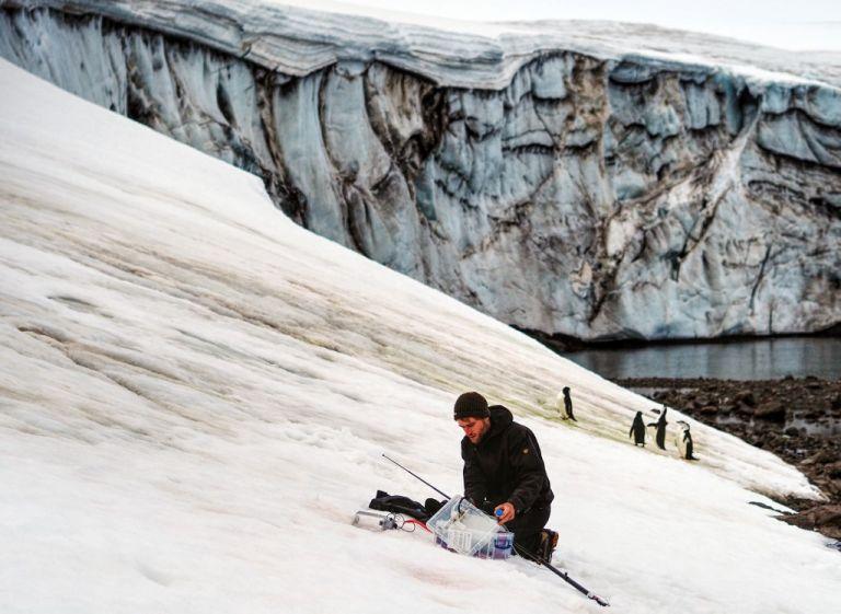 La isla Marambio se encuentra en las proximidades del extremo nororiental de la Península Antártica y es uno de los lugares más interesantes y visitados de la Antártida por los investigadores.