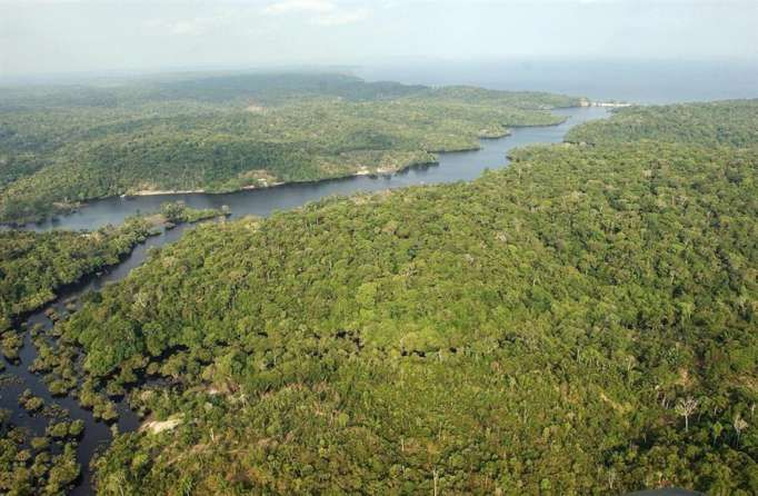 """""""El 'Pacto de Leticia' es una de las estrategias más importantes de los últimos años para proteger nuestro bioma amazónico. Foto: EFE."""