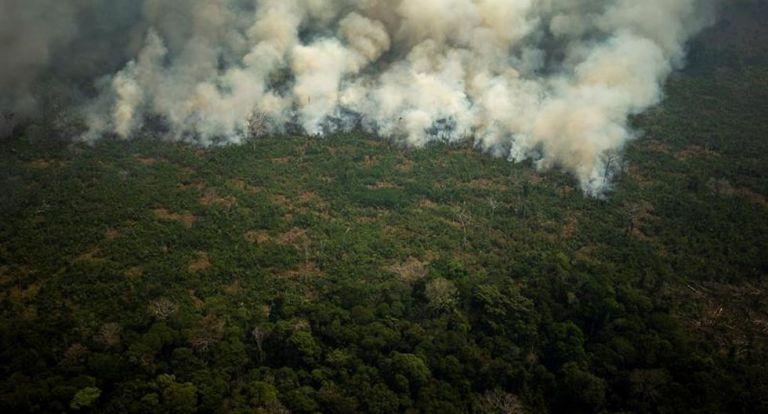 Incendio en la Amazonía. Foto: EFE