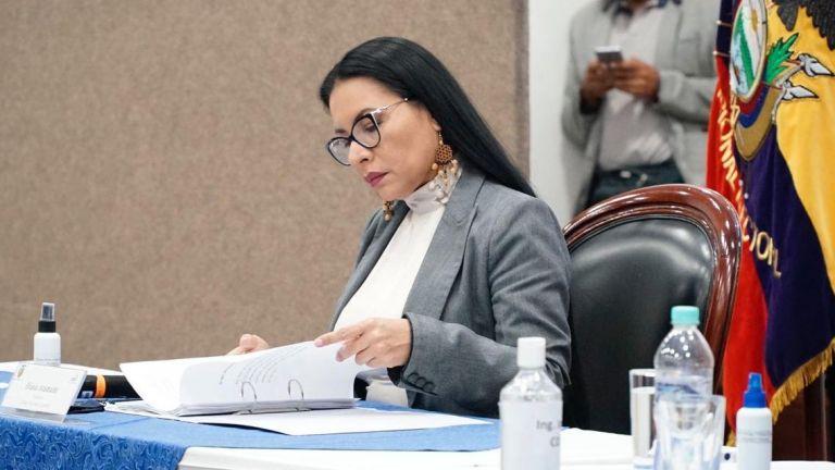 Diana Atamaint, presidenta del CNE, durante una sesión del pleno.