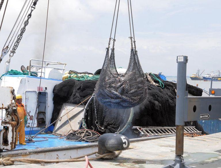 Además de conmemorar el Día Mundial de la Pesca, la Cámara Nacional de Pesquería exhorta a generar una normativa adecuada marítima que beneficie al sector y al medioambiente.