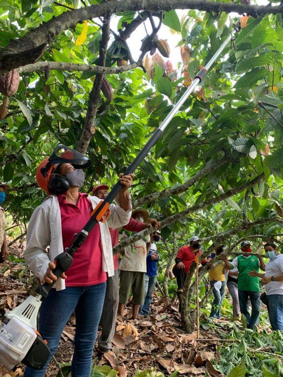Las escuelas de Agro Emprendimiento Nestlé llevan más de 3 años tecnificando a los agricultores ecuatorianos.