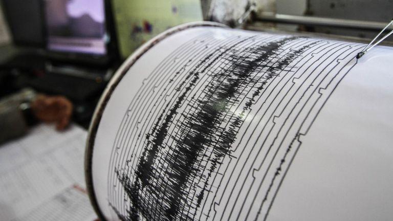 Un terremoto de magnitud 8,1 sacudió Nueva Zelanda. Foto: Archivo