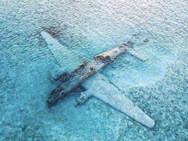 La drogra se transportaba desde Colombia a EE.UU en un avión Curtiss C-46 Commando, que terminó hundido en el Caribe.