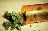 La marihuana también es conocida como cannabis.
