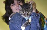 Una mujer sostiene a su gato que fue parte de esta pasarela exclusiva para mascotas. Foto: REUTERS