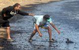 Un hombre trata de salvar a un ave cubierta de petróleo.