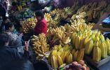 ECUADOR - En Ecuador sólo se producen bananos. (Fotos: RT / youtube / Reuters / flickr / web)